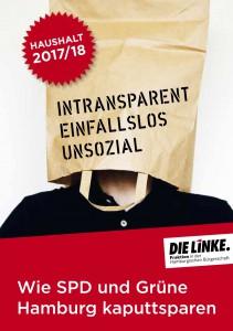 die_linke_hh_fraktion_broschuere_doppelhaushalt_2016-09_netz