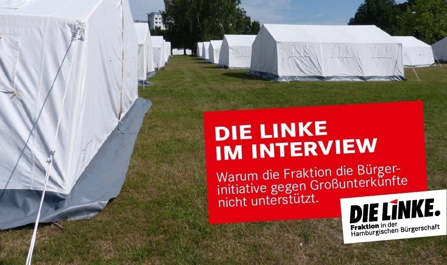 Die-Linke-im-Interview