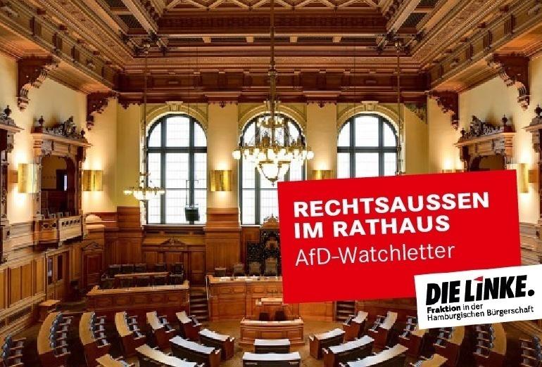 """LINKE startet AfD-Watchletter: """"Rechtsaussen im Rathaus"""""""