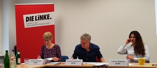 Haushalt 2019/20: Hamburg zur solidarischen Stadt für Alle machen!